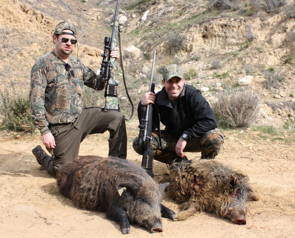 Kết quả hình ảnh cho pig hunting